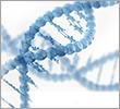 海洋性DNA
